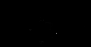 ILONA logo